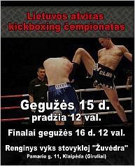 2010 m. Lietuvos atviras kikboksingo čempionatas